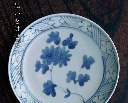菊花文6寸皿・藤塚光男