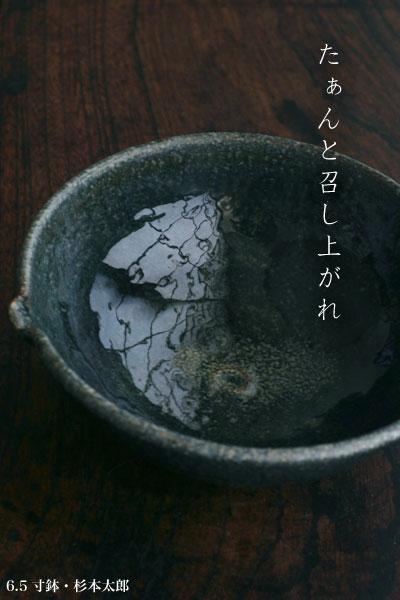 6.5寸鉢・杉本太郎