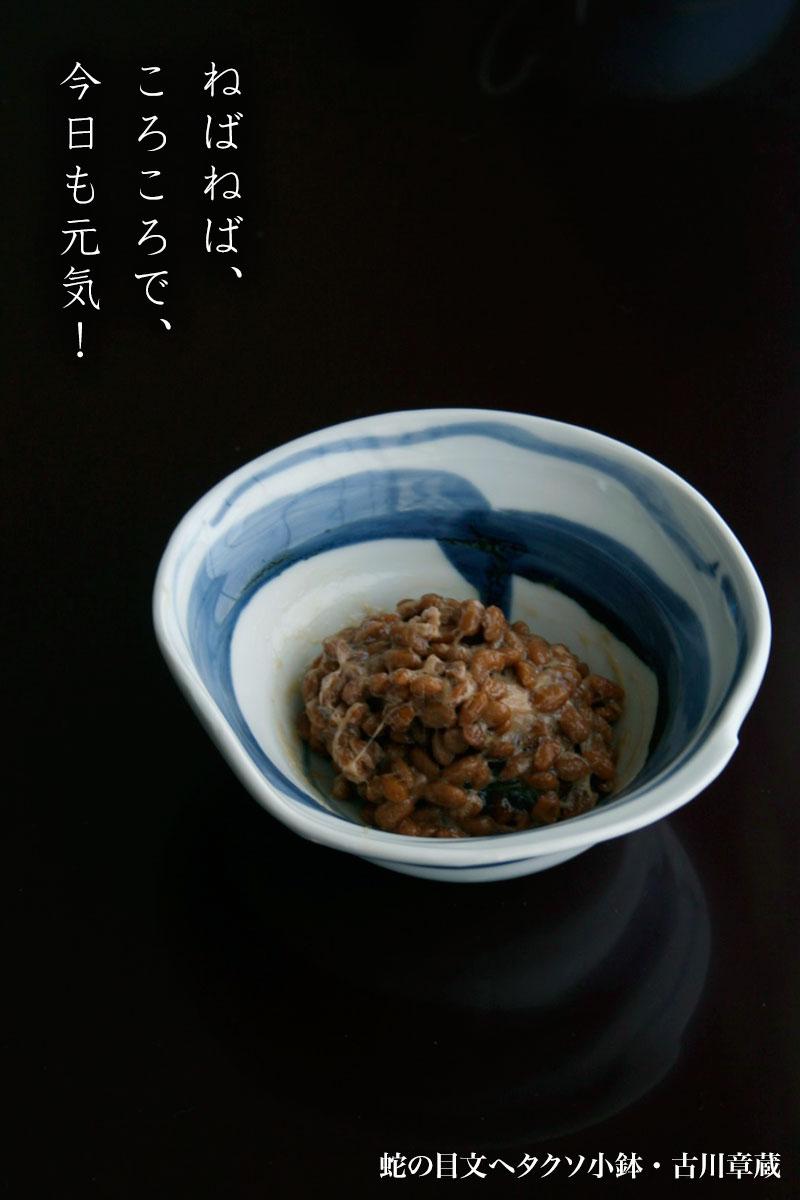 蛇の目文ヘタクソ小鉢・古川章蔵