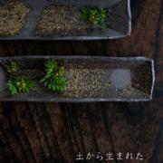 焼〆長皿・小・辻村塊