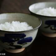 松の画飯碗・吉井史郎