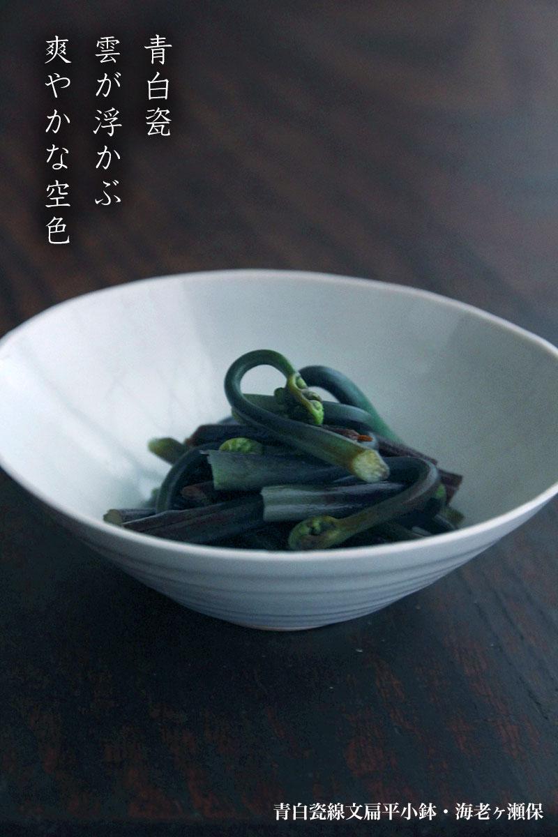 白磁・青磁:青白瓷線文扁平小鉢・海老ヶ瀬保
