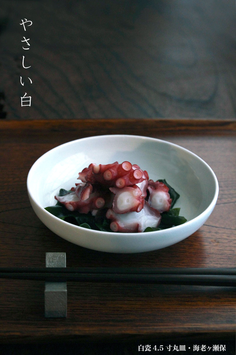 白磁(天草陶石)・白瓷4.5寸丸皿・海老ヶ瀬保