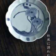 菊花文輪花5寸深皿・藤塚光男