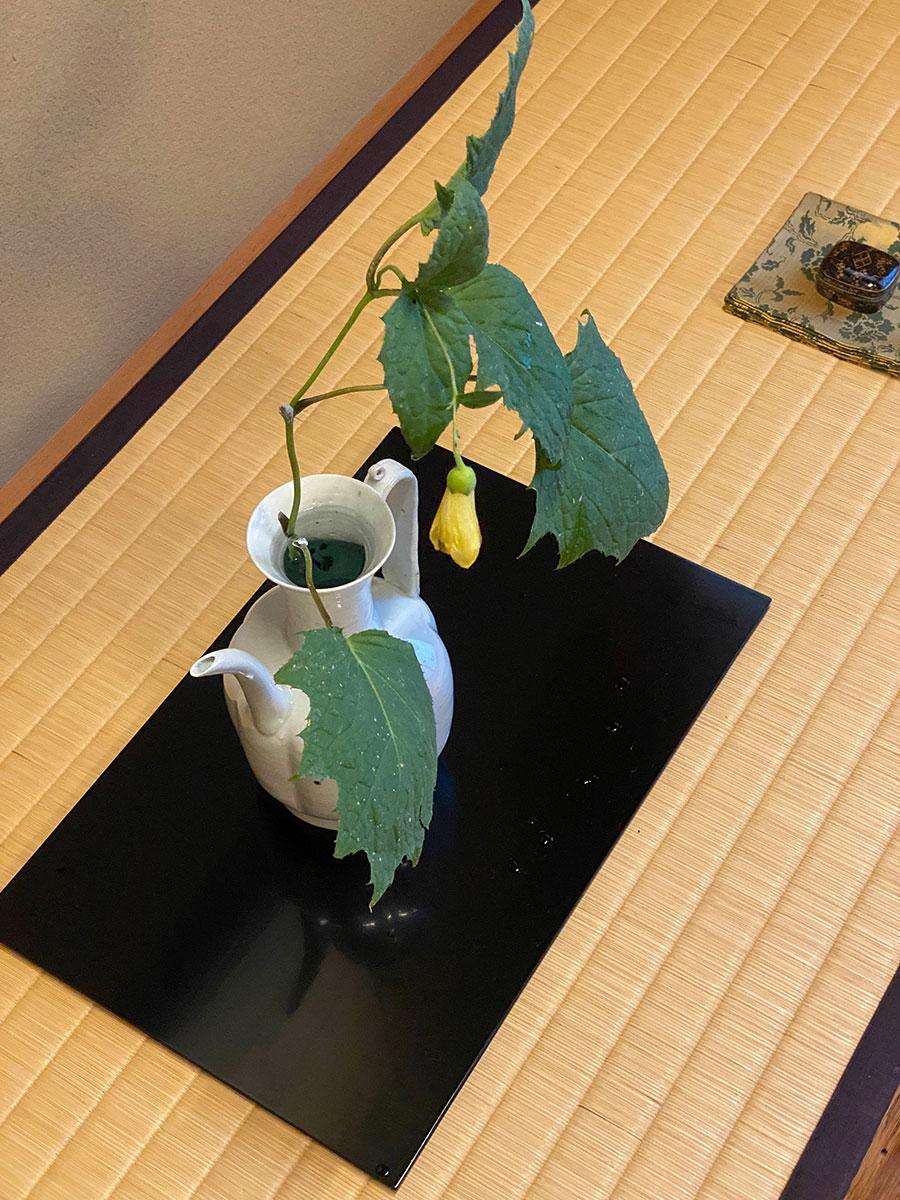 工芸店ようび NHKBSプレミアム「美の壺」