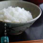 唐津焼:絵唐津飯碗・唐草文・小・中村恵子