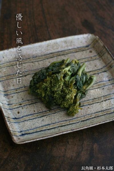 長角皿・杉本太郎